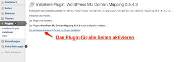 wordpress-domain-mapping-plugin-aktivieren